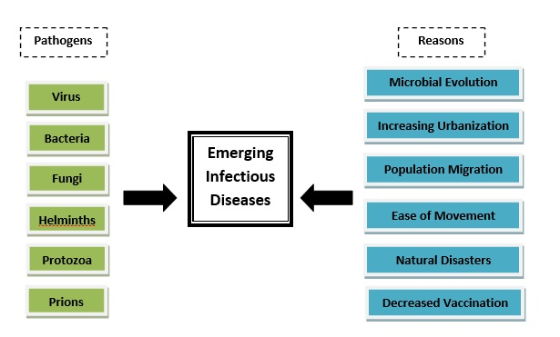 Figure 1: Pathogens and reasons for spread or existence of emerging infectious diseases Source: Beltz, (2011)