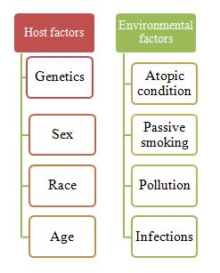 Different types of host and environmental risk factors